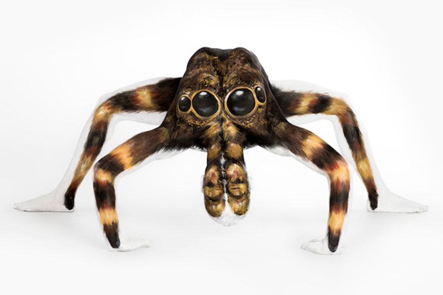 Body Art Spider
